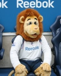 Lofty the Lion